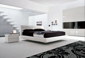 Black and White Color Combination
